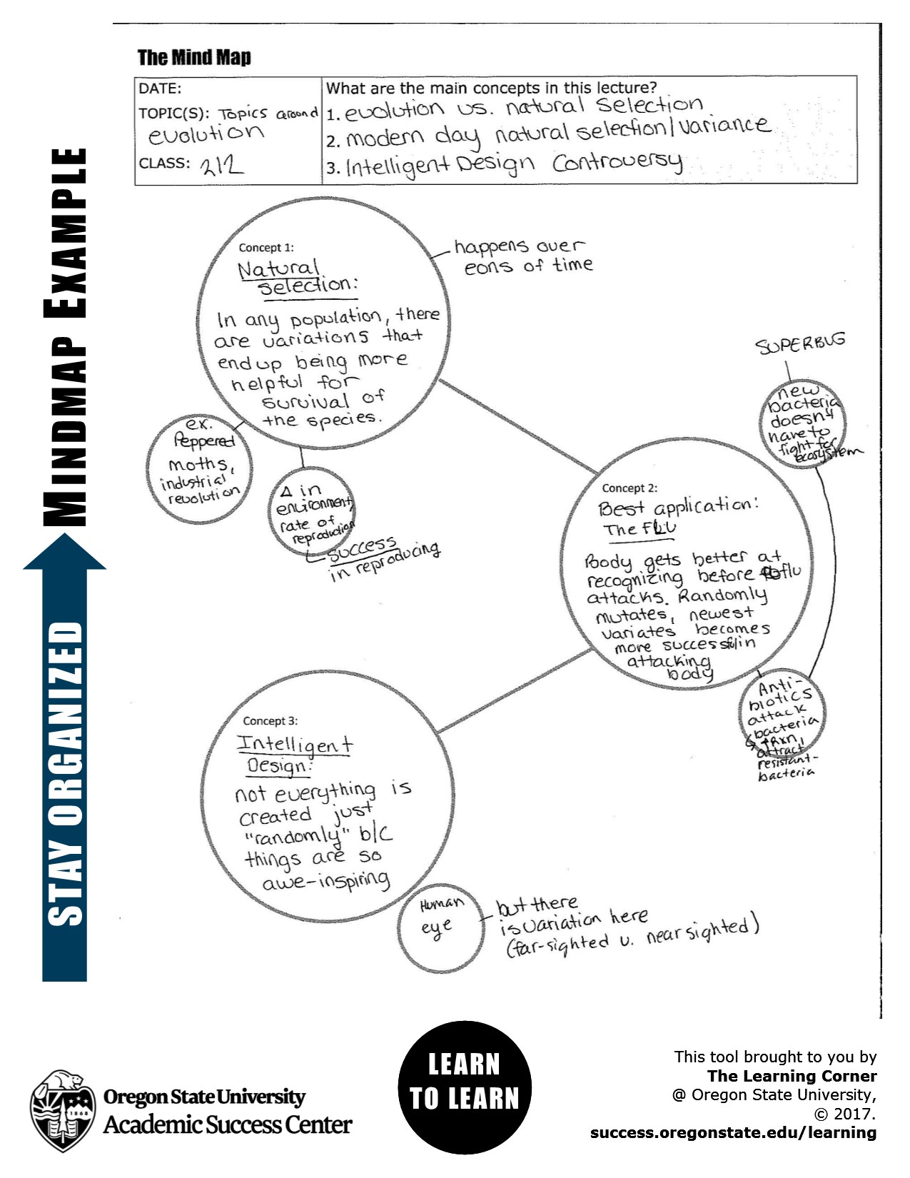 Note Taking Mind Map example