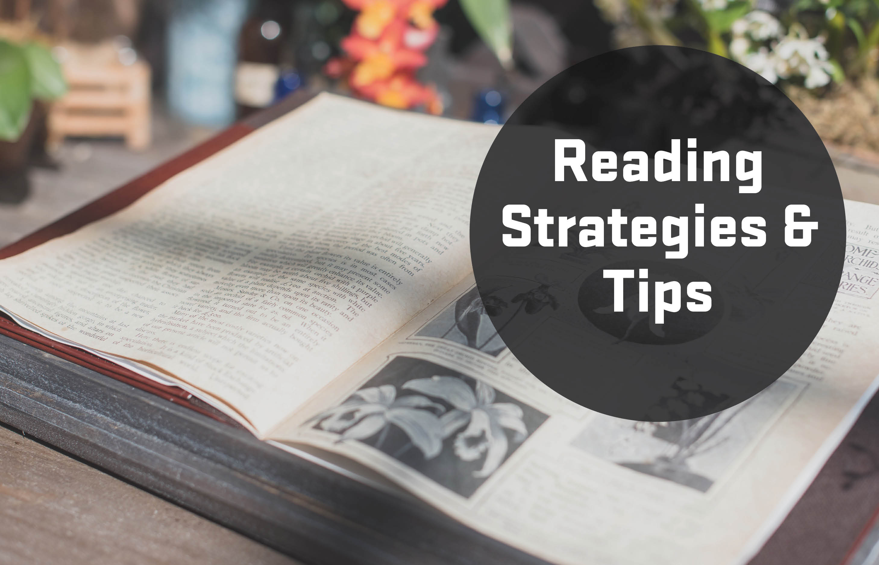 Reading strategies and tips