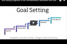 screenshot of goal setting video on youtube