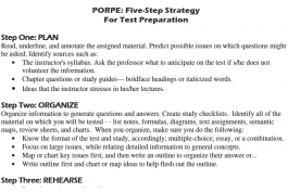 screenshot of PORPE strategy worksheet