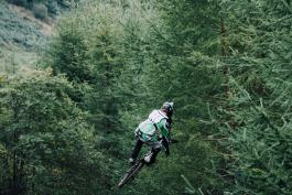 motor bike leap against backdrop of trees