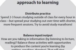 screenshot of the study cycle worksheet
