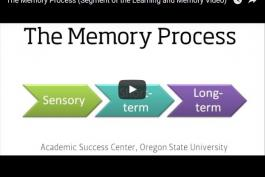 screenshot of The Memory Process Video