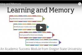 screenshot of Learning & Memory video
