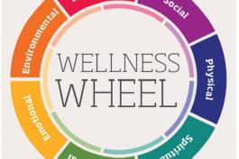 Image of wellness wheel