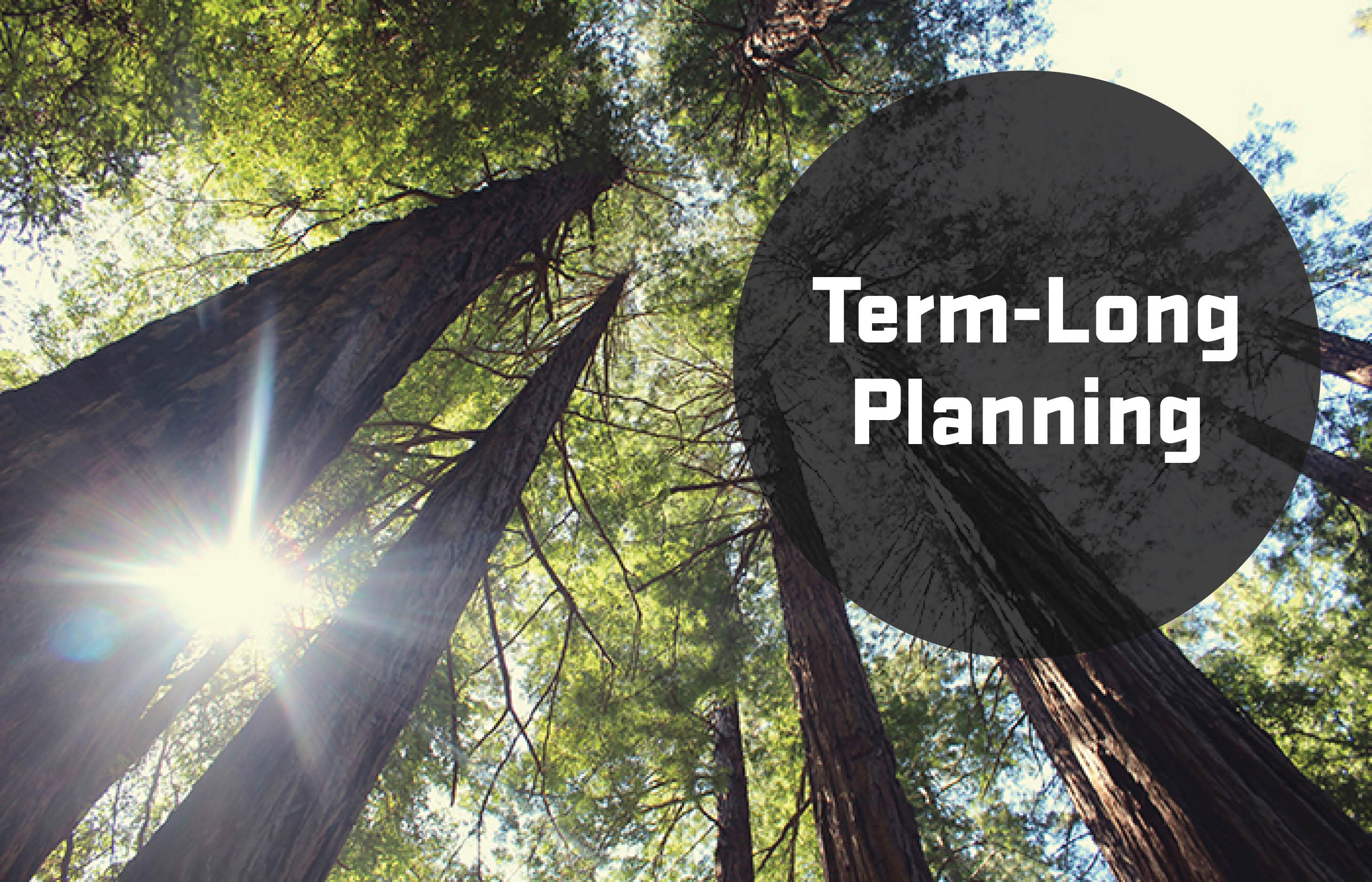 Term-Long Planning